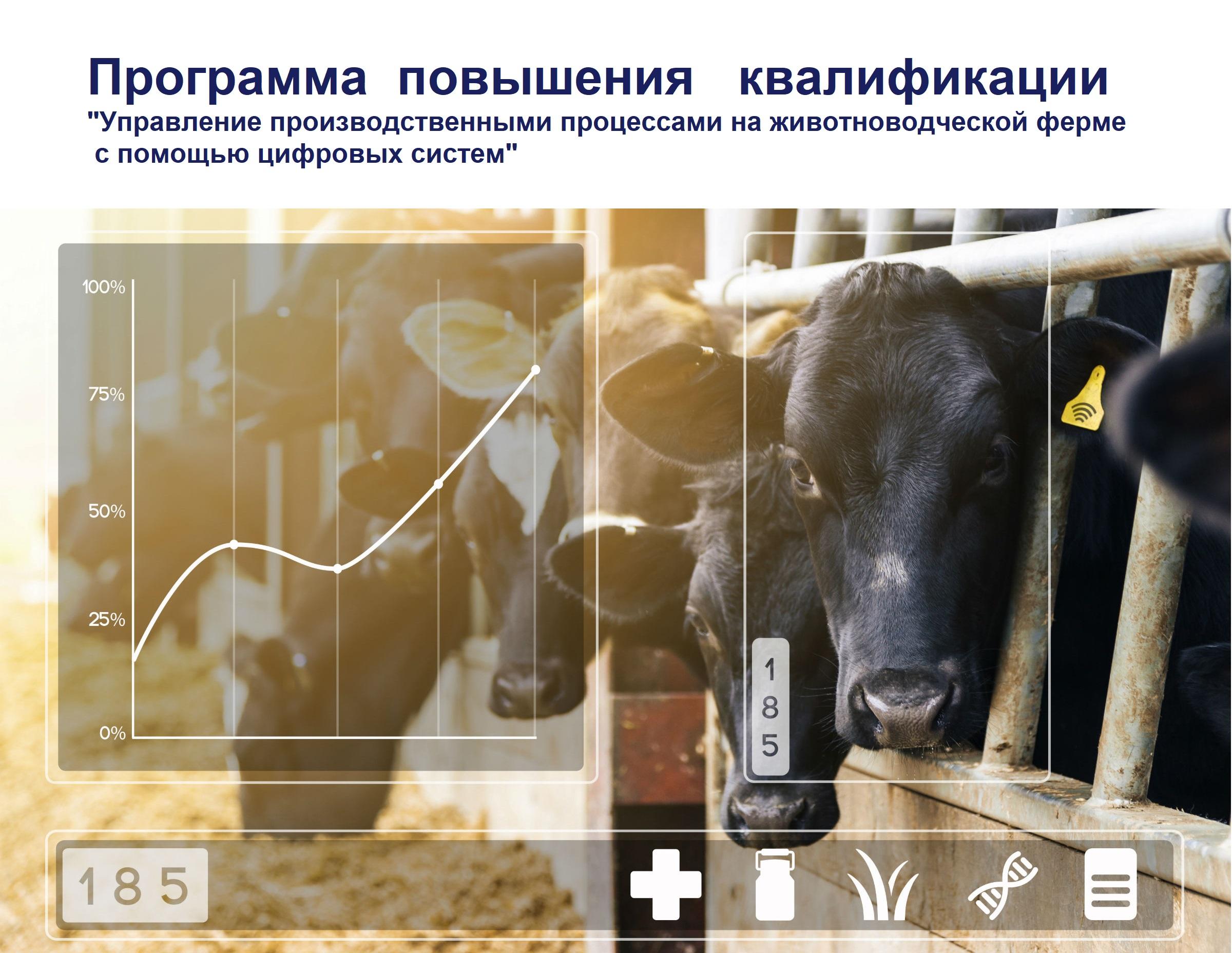 """Программа повышения квалификации """" Управление производственными процессами на животноводческой ферме с помощью цифровых систем"""""""