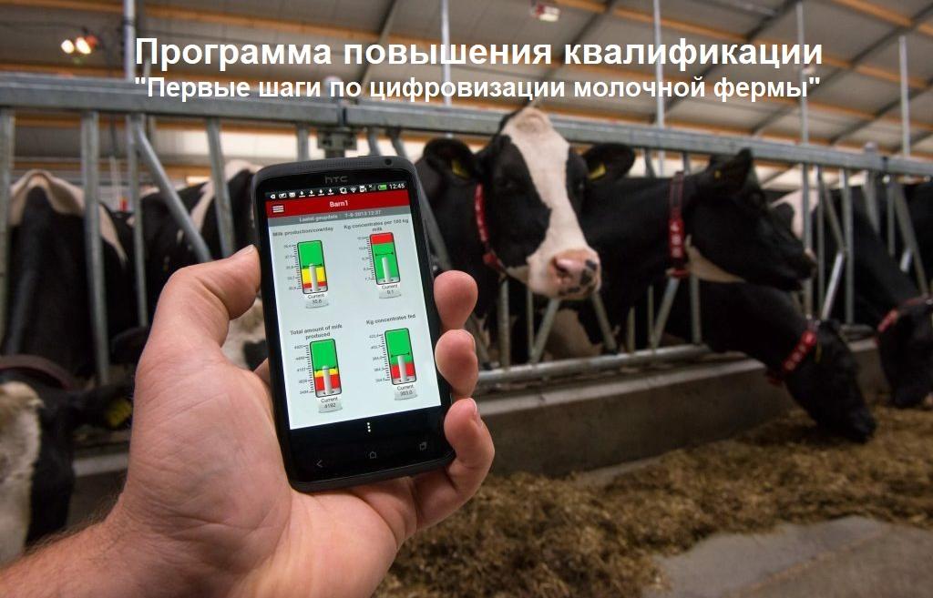 ППК Первые шаги по цифровизации молочной фермы